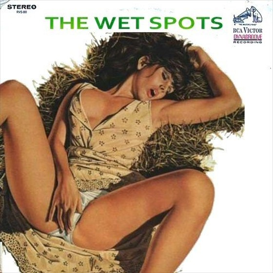 erotic-lp-covers-35-zi